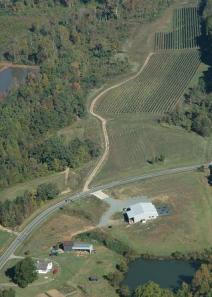 Arial view of Grove Vineyards.